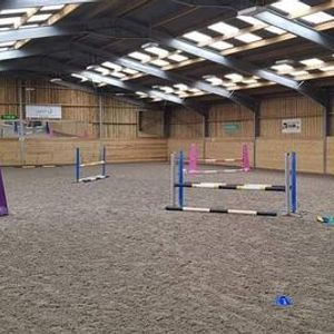 FULL  Monthly polework and show jumping Clinic