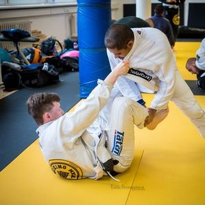 Wiking BJJ workshop and promotion day