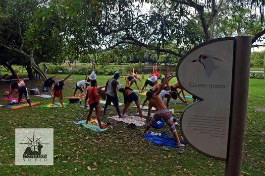 Ecoterapia: Yoga + Massoterapia no Bosque da Barra, 13 March   Event in Rio De Janeiro   AllEvents.in