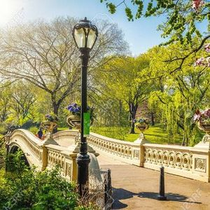 Central Park Date Walk (Sunset Singles Stroll)
