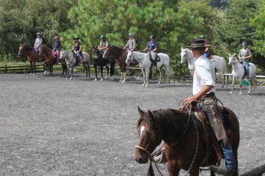 Dunedin 3 Day Horsemanship Clinic, 25 November   Event in Dunedin   AllEvents.in