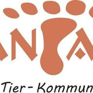 Diplomausbildung energetische Tierkommunikation Mantanka