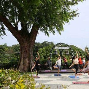 Yoga & Brunch with Urban Yogis