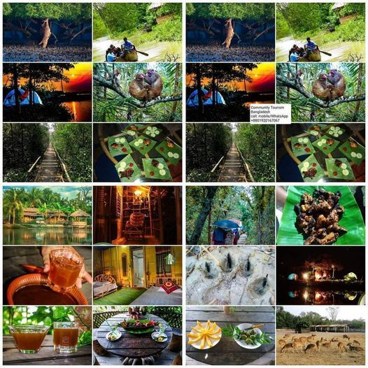 World Biggest Mangrove Forest Sundorban Tour (Foreigner Package), 10 June | Event in Dhaka | AllEvents.in