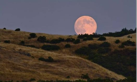 Women's Full Moon Hike 2021, 29 January | Event in Mountain | AllEvents.in