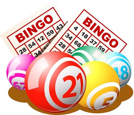 Bingo - Bingo