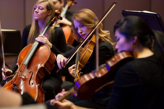 Iris at the Brooks: String Ensembles, 17 October | Event in Memphis | AllEvents.in