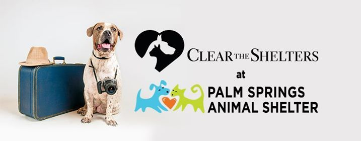 Clear the Shelter at Palm Springs Animal Shelter