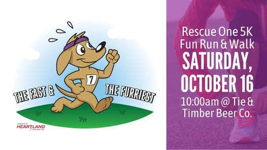 Rescue One's 7th Annual The Fast & The Furriest | Event in Springfield | AllEvents.in