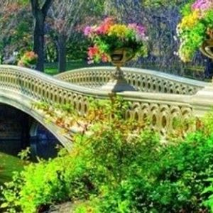 Paint In The Park (Social Distancing in Central Park)