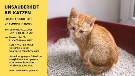 Unsauberkeit bei Katzen, 7 March | Event in Neuss | AllEvents.in