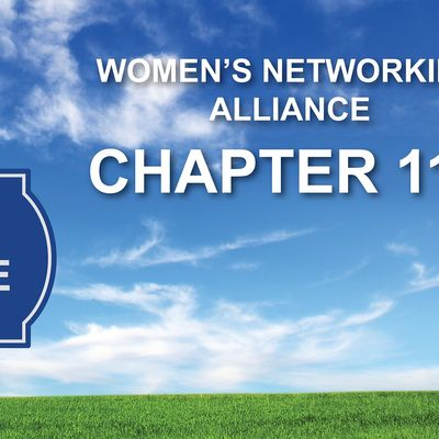 Womens Networking Alliance Ch. 112 Meeting (Sunnyvale CA)