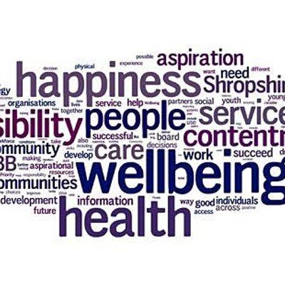 Rhwydwaith Lles  Wellbeing Network