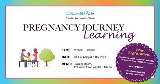 Parenthood Workshop Pregnancy Journey Learning