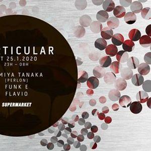 Particular wFumiya Tanaka (Perlon - Sundance)