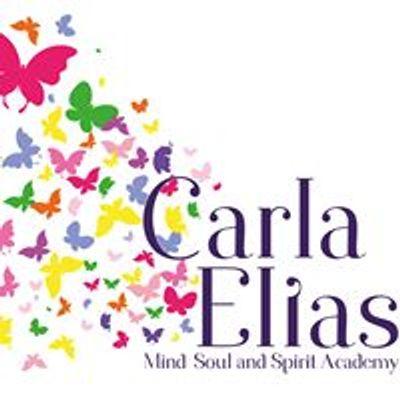 Carla Elias Mind Soul and Spirit Academy