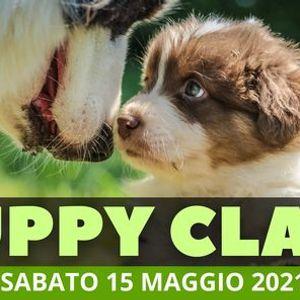 Puppy Class - Socializzazione Cuccioli