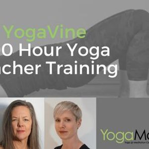YogaVine 200 Hour Yoga Teacher Training