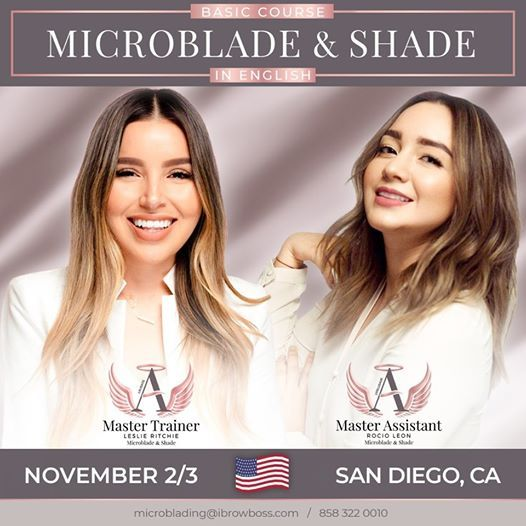 Basic Course Microblade & Shade  San Diego CA