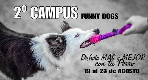 2 Campus Funny Dogs - Disfruta ms y mejor con tu Perro