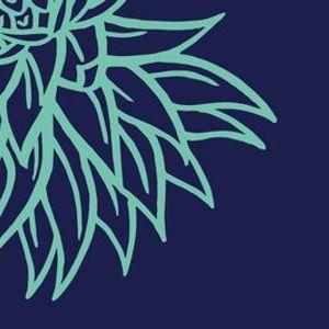 2020 Queensland Literary Awards online announcement