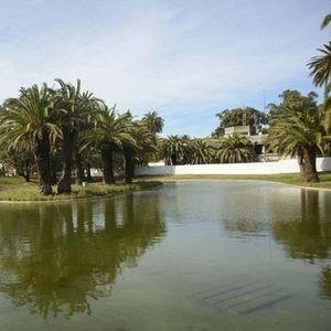 Caminhando em Jardins e Parques de Lisboa