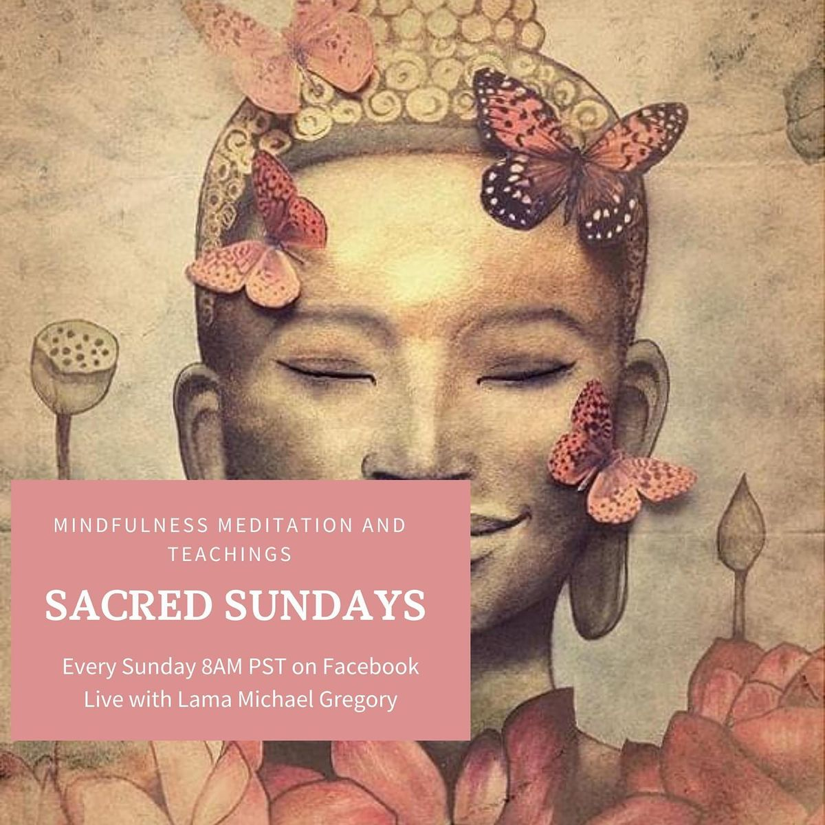 Sacred Sunday's: Online Mindfulness Meditation and Teaching | Online Event | AllEvents.in