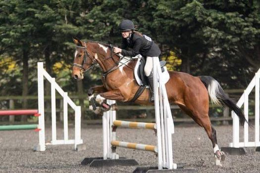 Spring Unaffiliated Show Jumping, 24 April | Event in Kingston Upon Hull | AllEvents.in