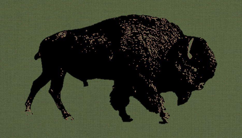 Buffalo Run & Gun - Fall, 17 September   Event in Lampasas   AllEvents.in