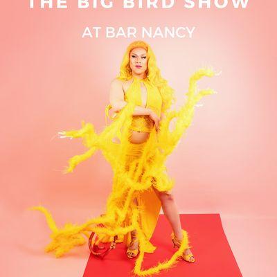Dasha Sweetwaters Presents The Big Bird Show