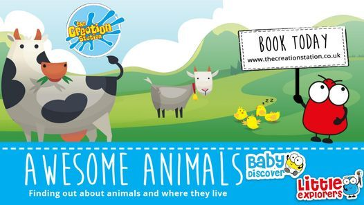 Baby Discover and Little Explorer Combined, 1 March   Event in Lincoln   AllEvents.in