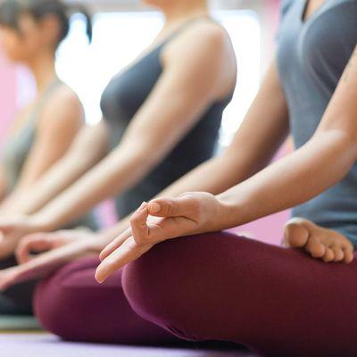 TYNP - Online Yoga Class