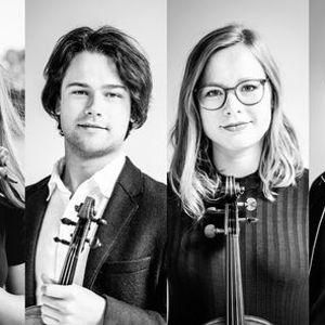 Quartetto darchi in residence - Animato Kwartet
