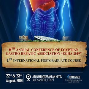 6th Annual Conference Of Egyptian Gastro Hepatic Association