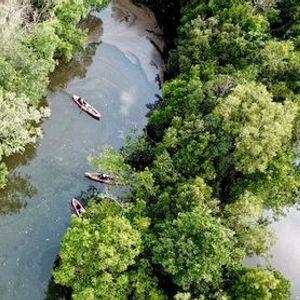 Simpang River Trail