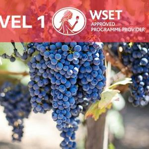 WSET Level 1 Award in Grapes