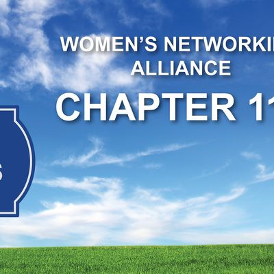 Womens Networking Alliance Chapter 114 Meeting (Los Gatos CA)