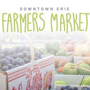 Downtown Erie Farmers Market