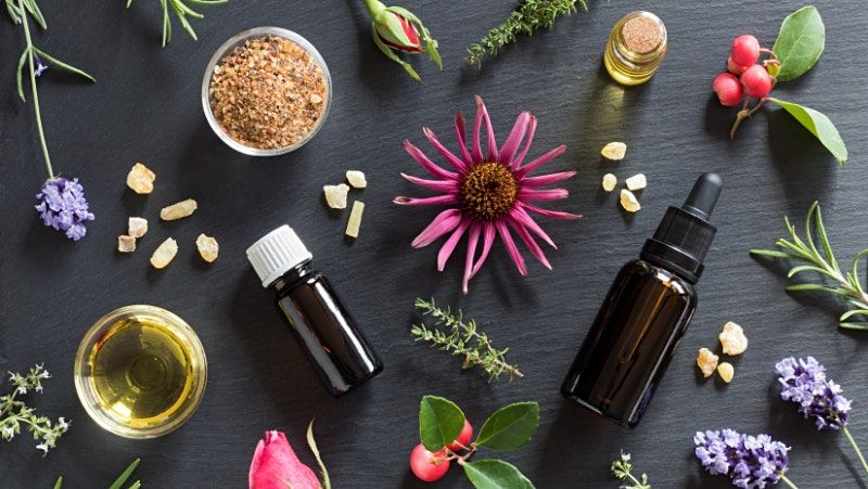 Getting Started With Essential Oils - St. Petersburg | Event in St. Petersburg | AllEvents.in