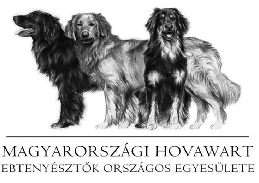 Hungary - Hovawart Klub Hungary Special show  IHF cert