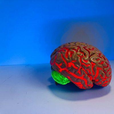 Community Matters Super brain workout