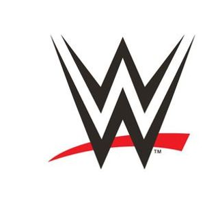 WWE Souvenir Ticket