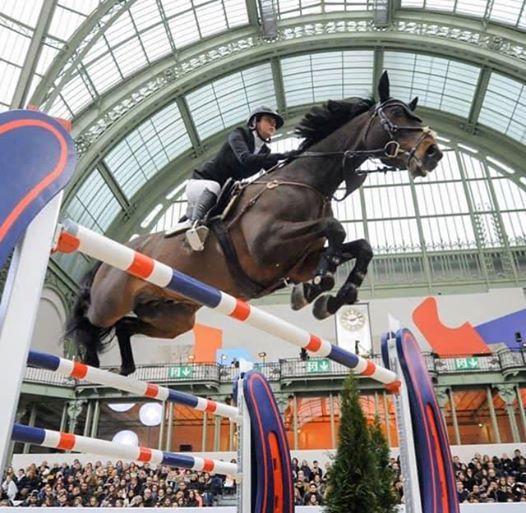 VERO at Olympia International Horse Show