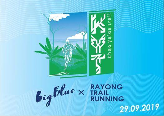 BigBlue KYT 2019