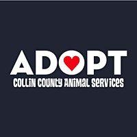 CCAS Volunteer Dog 101, 30 October | Event in McKinney | AllEvents.in