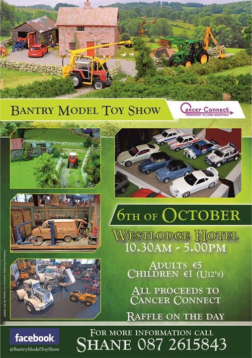 Bantry Model Toy Show