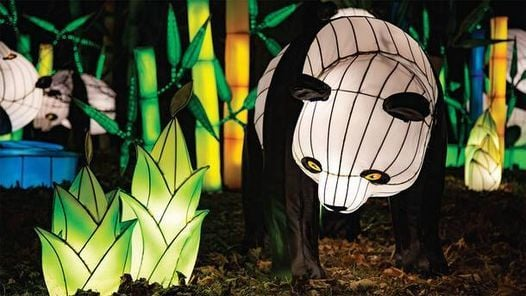 NYC Winter Lantern Festival, 12 January | Event in York | AllEvents.in
