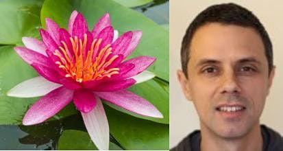 Oxford Insight Meditation Online Day Retreat with Jake Dartington | Online Event | AllEvents.in