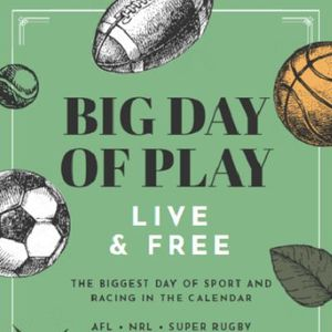 Big Day of Play