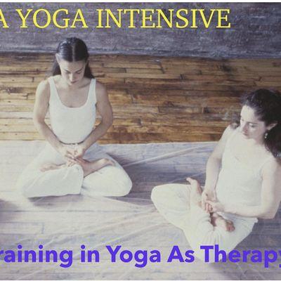 Agni Kriya Yoga Intensive  and Yoga As Therapy Training